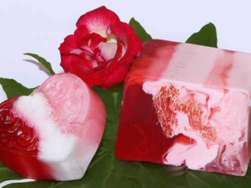 больдо: натуральное средство против мочевых инфекций
